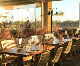 יס פלאנט מסעדות ראשון לציון